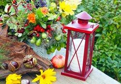 Gartenparty Beleuchtung - Laternen