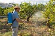 organische Spritzmittel für Obstbäume einsetzen