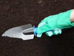 Gartenboden bestimmen
