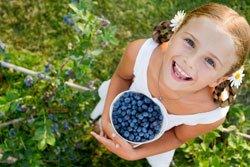 Nicht nur Kinder lieben den Naschgarten
