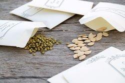 Aussaattermine notieren & Saatgut kaufen