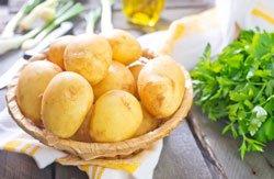 Kartoffeln einwecken