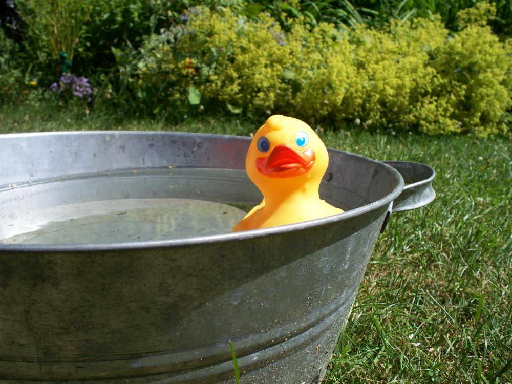 Kneipp-Becken im Wellness-Garten