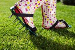 Stark beanspruchte Rasenflächen verdichten schnell