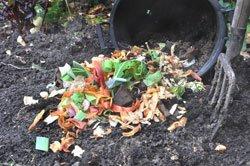 Biologische Dünger sind beim Obst-/Gemüseanbau ein Muss