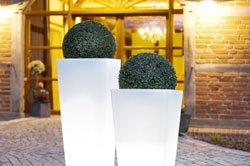 Beleuchtete Pflanzenkübel