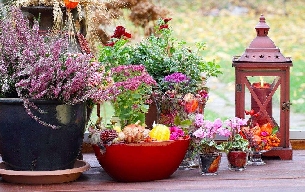 Terrasse Herbstdeko Heidekraut
