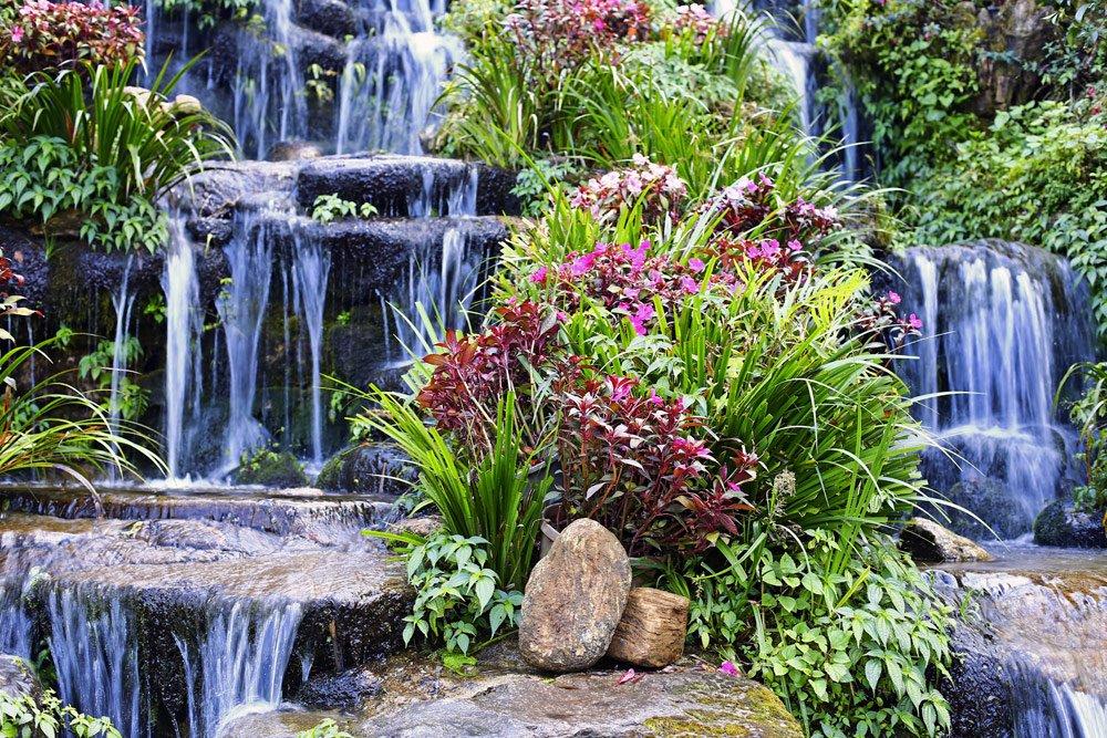 Wassertreppe bepflanzen