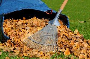 Kompostiertes Laub eignet sich gut als Dünger