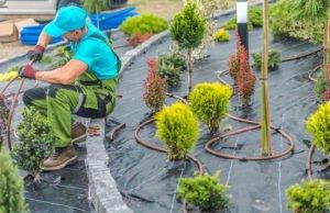 Gärtner & Gartenbau von der Steuer absetzen?