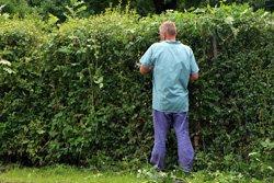 Gärtner von der Steuer absetzen - ist das möglich?