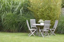 Welche Pflanzen passen zu Bambus?