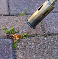 Unkraut in Pflasterfugen mit Gas entfernen