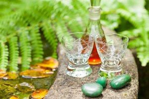 Cola-Kraut hilft gegen Verdauungsbeschwerden