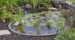 Gartenteich Teichbecken