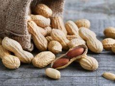Erdnüsse Nährwerte