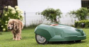 Mähroboter Kaufberatung: So finden Sie den besten Mähroboter für Ihre Ansprüche