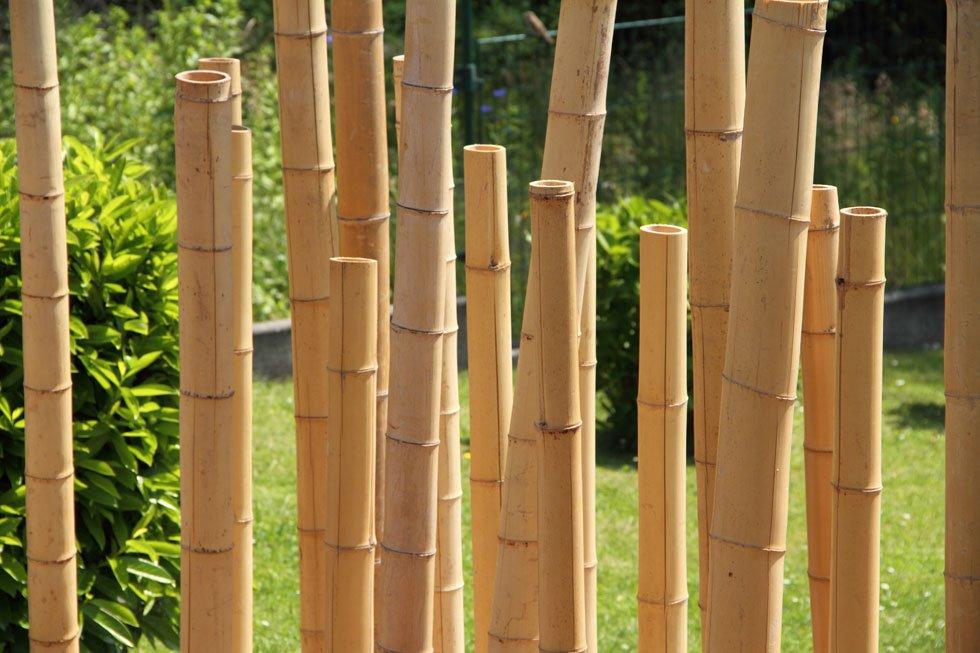 Sichtschutz im garten 22 raffinierte ideen anregungen for Gartengestaltung bambus