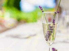 Lavendelsirup selber machen - Rezept & Anleitung