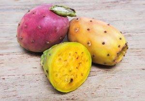 Kaktusfeigen schmecken süß-säuerlich