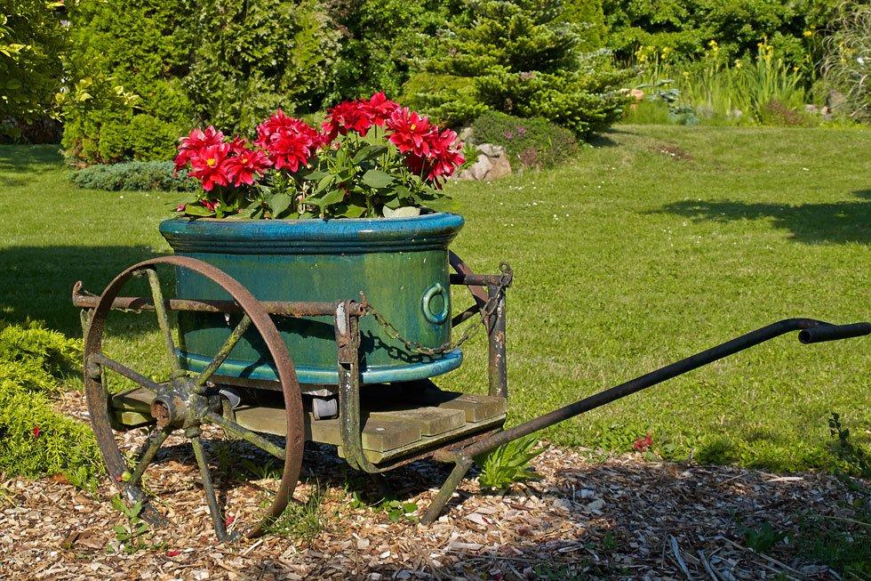 Hochbeet Aus Holz Oder Stein ~   gefüllt und mit Pflanzen bestückt werden Probieren Sie's aus