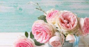 Stilvolle arrangierte Rosen in der Vase.