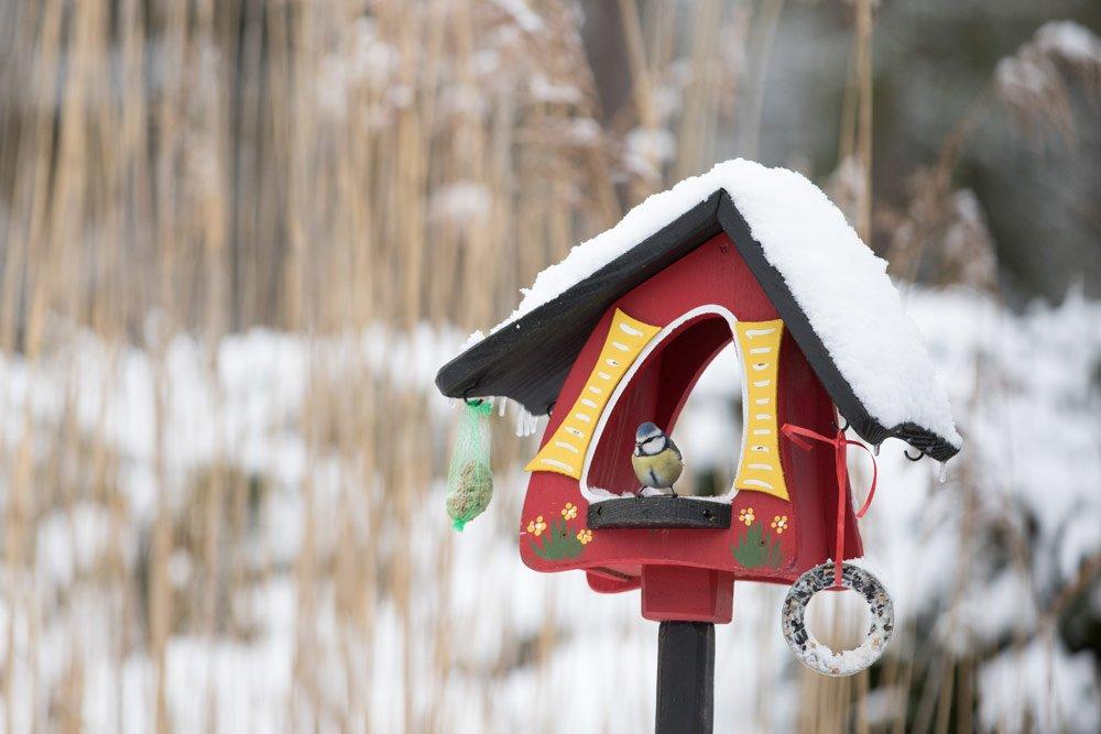 Terrasse winterlich gestalten: Vogelfutterhaus