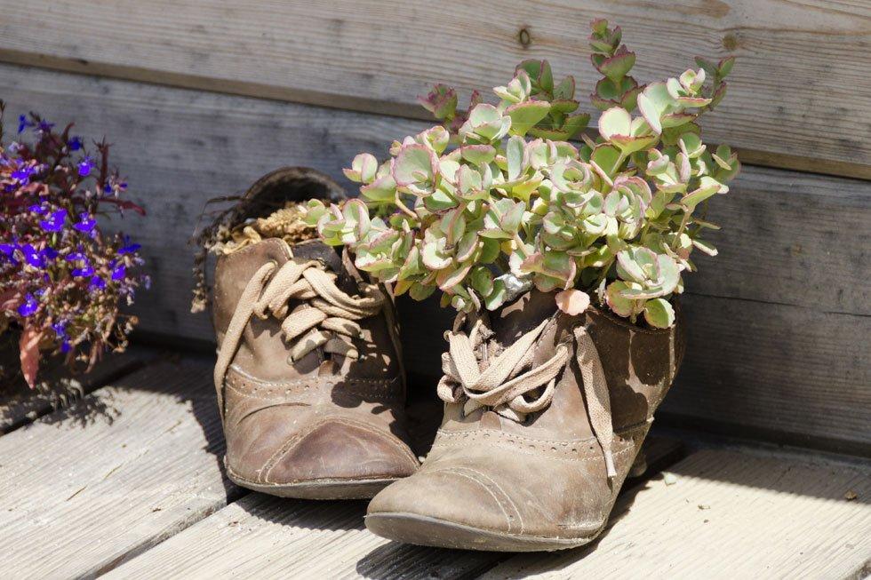 Originelle Pflanzgefäße: 21 Pfiffige Ideen Für Jeden Geschmack ... Alte Schuhe Bepflanzen Originelle Pflanzgefase Garten