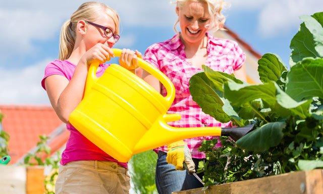 Gartenarbeit Hochbeet
