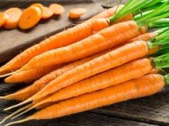 Karotten gesund