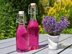 Lavendelsirup Rezept