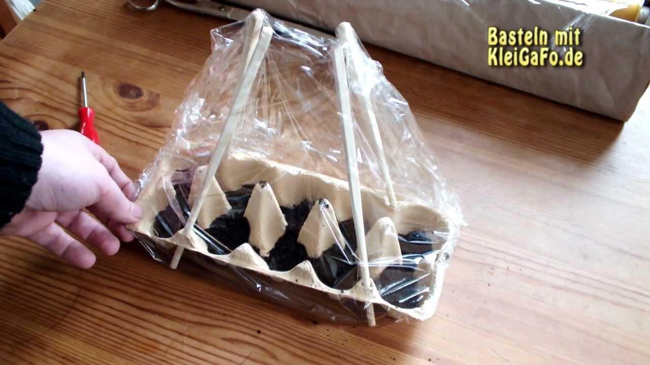 video eierkarton als gew chshaus nutzen so lassen sich. Black Bedroom Furniture Sets. Home Design Ideas