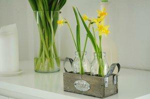 Holen Sie sich den Frühling ins Haus