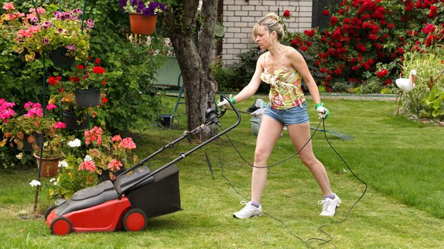 Gartenarbeit Teeanger Rasen mähen