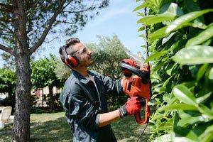 Gartenarbeiten von der Steuer absetzen – So funktioniert´s