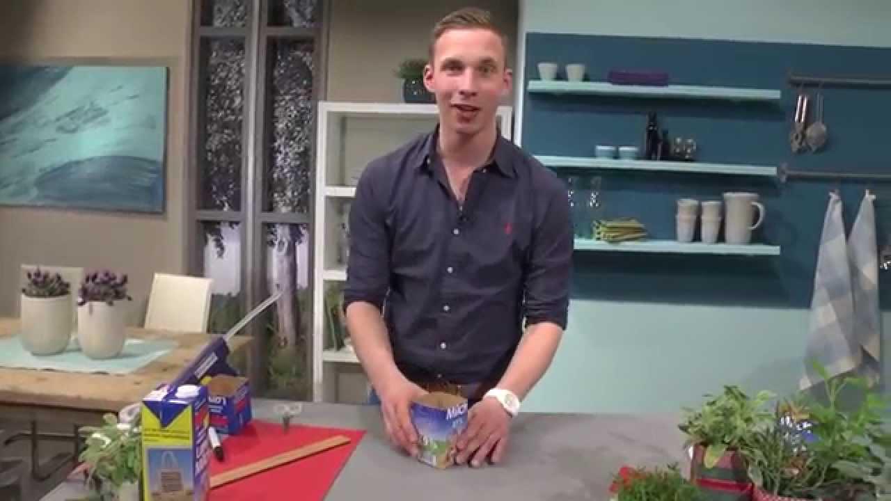 Originelle Pflanzgefäße: 21 pfiffige Ideen für jeden Geschmack ...