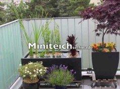 tr nendes herz im k bel halten so gedeiht es auch auf balkon und terrasse gut. Black Bedroom Furniture Sets. Home Design Ideas