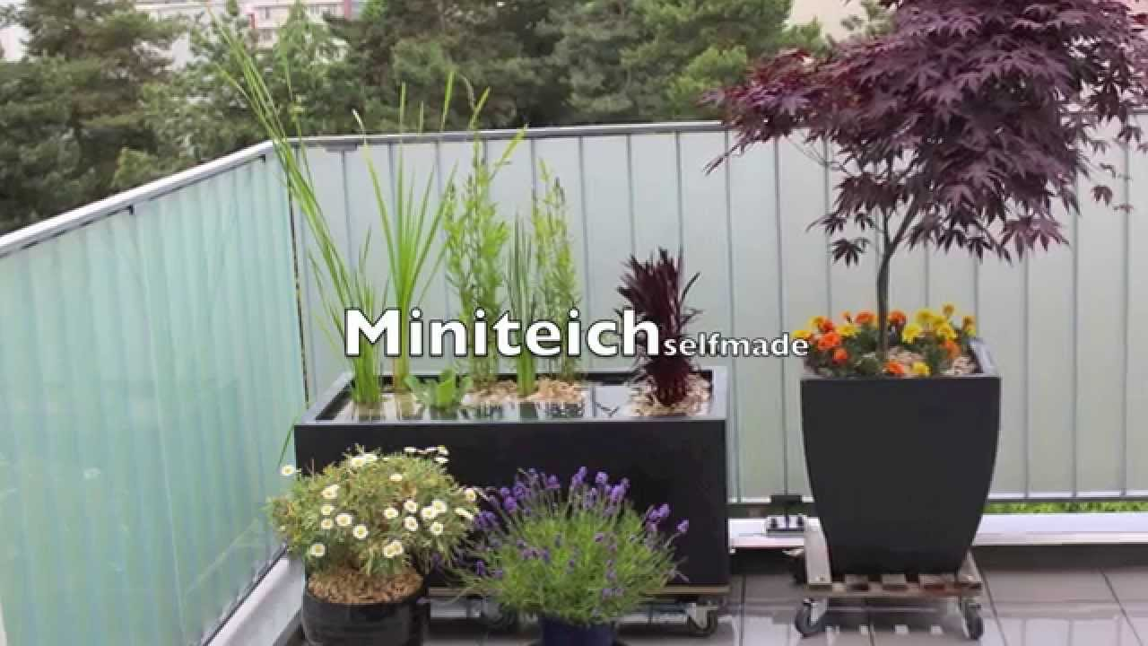 video miniteich f r balkon und terrasse so schnell wird. Black Bedroom Furniture Sets. Home Design Ideas