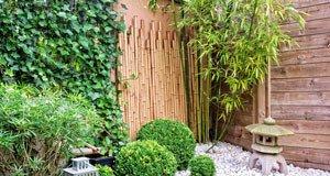 meine bambus tipps f r deinen garten. Black Bedroom Furniture Sets. Home Design Ideas