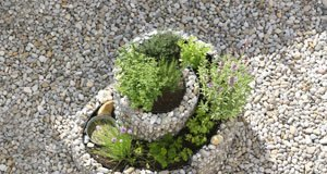 Kräuterspirale bepflanzen – So treffen Sie die richtige Wahl