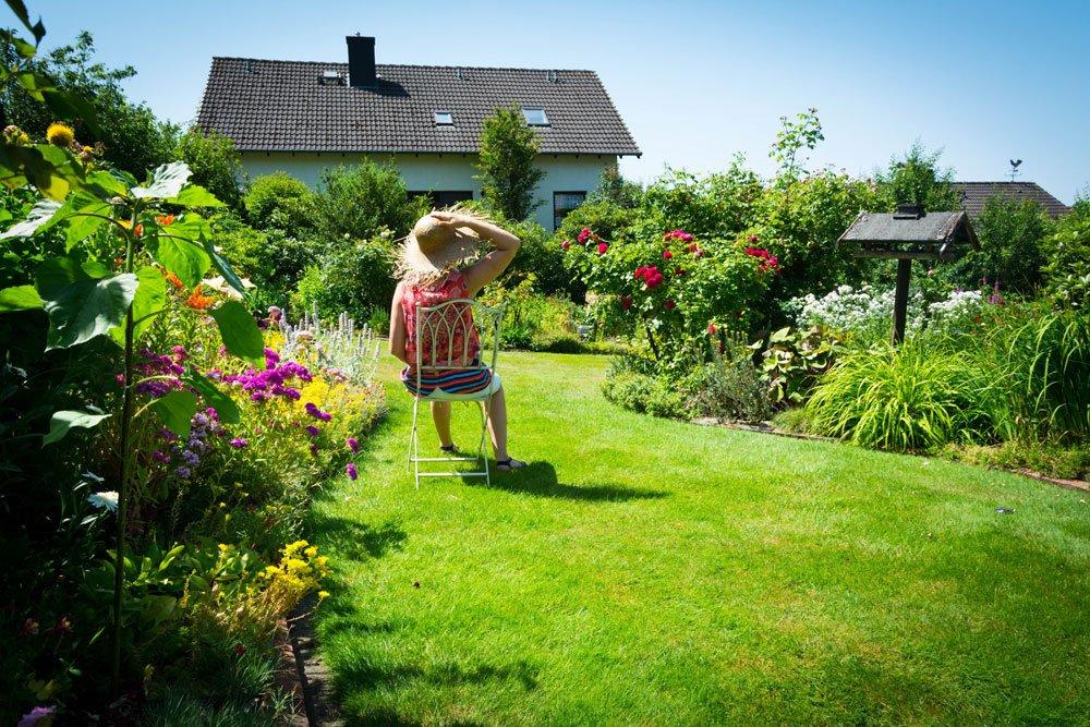 Rasen von Quecke befreien