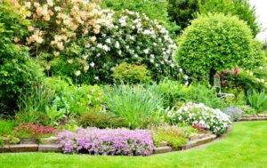 B ume unterpflanzen kleine begleiter f r die riesen in for Gartengestaltung um einen baum