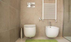 Regenwasser nutzen Trinkwasser sparen bei Toilettenspülung