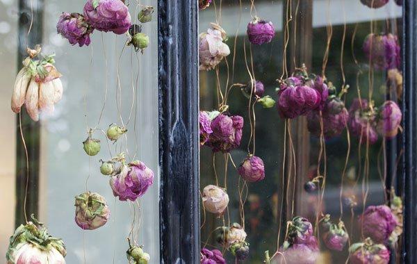 Ganz und zu Extrem Blumen trocknen und als Dekoration verwenden #UO_69