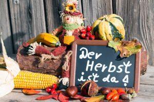 Garten herbstlich gestalten - 6 raffinierte und schnell umsetzbare Dekoideen