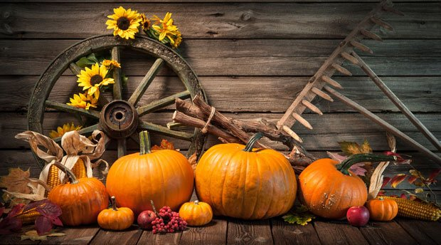 Deko Tipp 2: Rustikales Wagenrad Mit Herbst Naturmaterialien Dekorieren