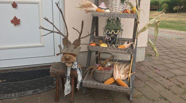 Garten herbstlich gestalten 6 schnell umsetzbare dekoideen for Deko ideen holz