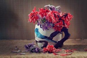 Haltbarkeit von Schnittblumen verlängern: 8 Tipps vom Schnitt bis zum richtigen Standort