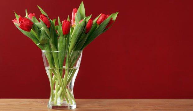 Schnittblumen länger frisch halten - saubere Vase