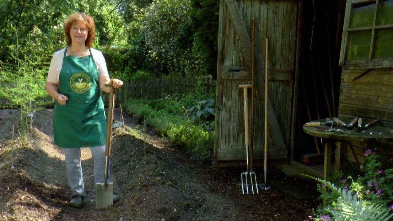 Gartentips  Gartentipps.com - Tipps für deinen Garten